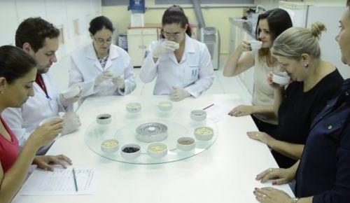 Curso de Análise Sensorial - ênfase em arroz e feijão